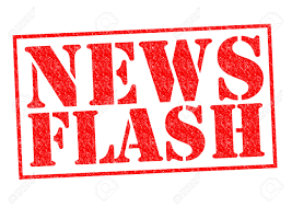 LJ Hooker News Flash
