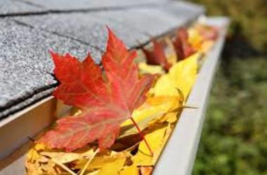 Remove autumn leaves from guttering