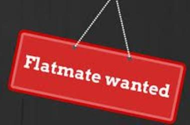 Flatemate Wanted